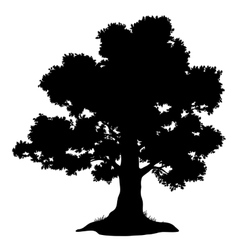 Oak tree and grass silhouette vector image