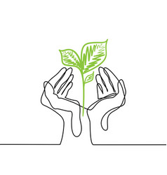hands holds a living green plant seedling vector image vector image