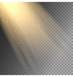 Ray of light on transparent background vector image vector image