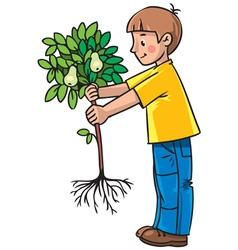 boy gardener vector image