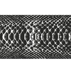 Distressed overlay wooden bark texture vector image