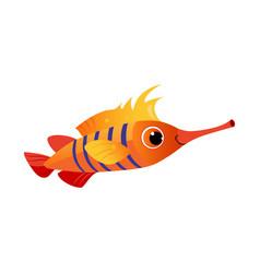Orange longnose fish sea tropical aquarium fish vector