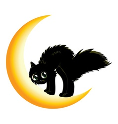 Black cat on moon2 vector
