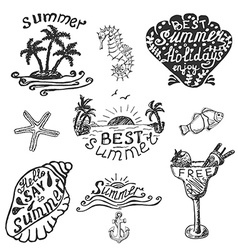 Set of elements for summer calligraphic design vector