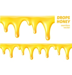 Drops honey Seamless vector image vector image