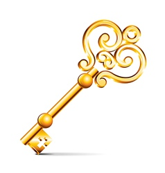 object retro golden key vector image