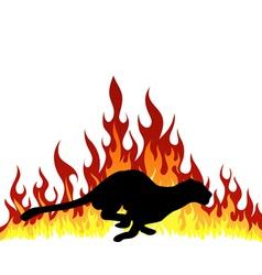 flame puma vector image