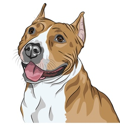 Sketch portrait of dog vector