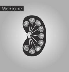 Black and white style icon of kidney vector