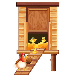 chicken coop with hen and chicks vector image