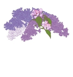 Greeting card with blooming lilac and apple tree vector
