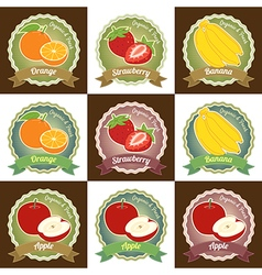 Set of various fresh fruit label badge tag sticker vector