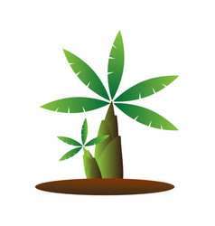 banana tree cartoon vector image vector image