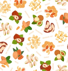 Various nuts pattern vector