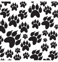 Paws icon vector