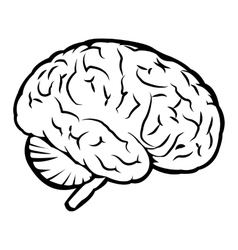 Best human brain sign vector