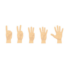 cartoon human hand showing numbers set row vector image vector image