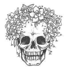 Dead skull with rose flowers sketch vector image