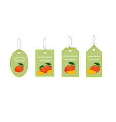 Design labels with ripe yummy mango vector