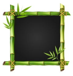 Bamboo grass frame with leafs isolated on white vector