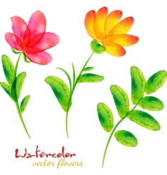 Bright watercolor painted flowers set vector