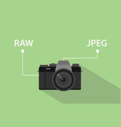 Comparing format file of camera between raw format vector