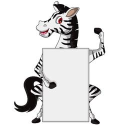 cute zebra cartoon with blank sign vector image