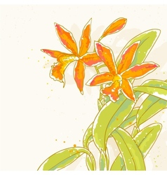 Orange orchids vector
