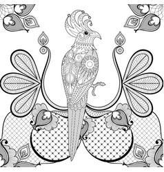 Black lace with parrot bird for vintage card vector image