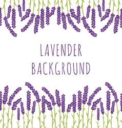 Lavender floral background vector image vector image