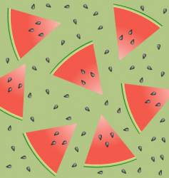 watermelon and seeds vector image vector image