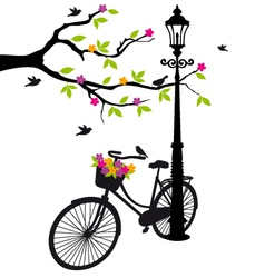 Old bicycle with flowers vector
