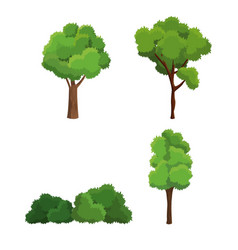 tree nature diversity plant vector image