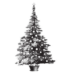 decorated potted pine tree vintage vector image vector image
