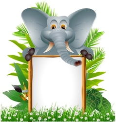 elephant cartoon with blank sign vector image