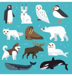 Polar animals flat icons vector