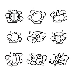 Fruits and vegetables lined vector