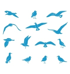 Silhouettes of flying seagulls vector