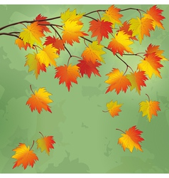 Vintage autumn background with branch of tree vector image