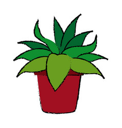 Potted plant flora natural decoration vector