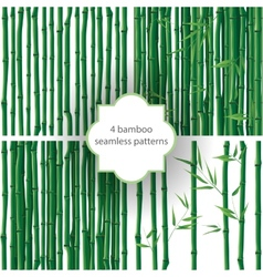 Bamboo patterns vector