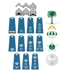 Air Force insignia Saudi Arabia vector image