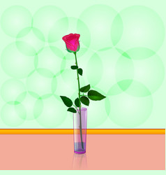one red rose in a vase isolated for design vector image vector image