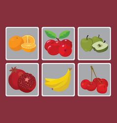 oranges bananas peaches apples grenades vector image