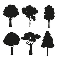 silhouette tree different nature trunk vector image vector image