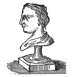 Bust is a piece of statuary representing the head vector
