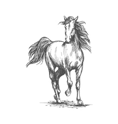 White horse freely running portrait vector