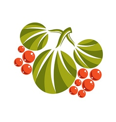 Three simple green leaves with orange seeds vector