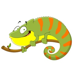 chameleon vector image vector image