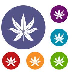 Chestnut leaf icons set vector